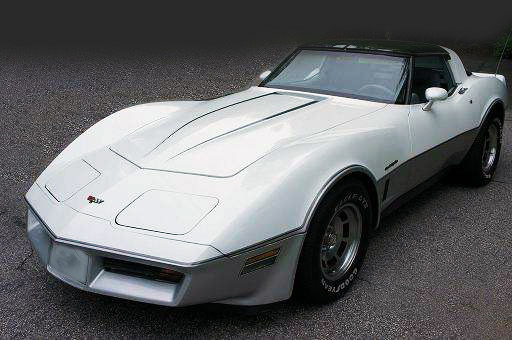 1981 - 1982 Corvette Decal Kit, exterior stripes (silver ...